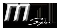 mspa_logo_small